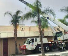 Crane Rentals for Contractors